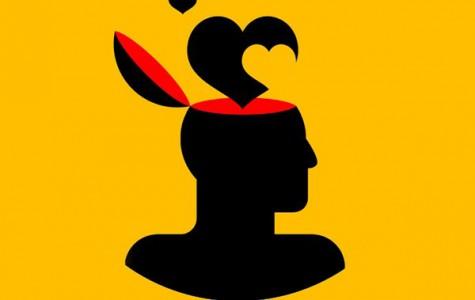 The brain in love