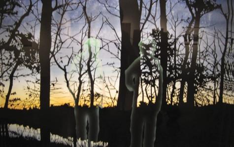 'Arcadia Now': Nature Through Art