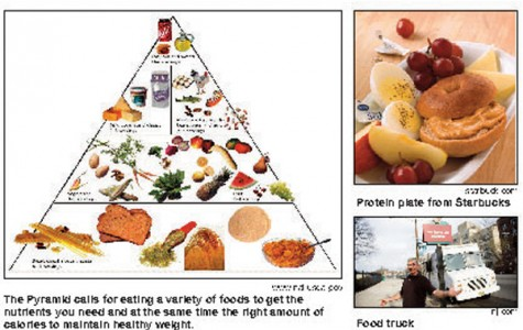 Food Choices for the Concerned Eater