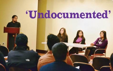 'Undocumented'