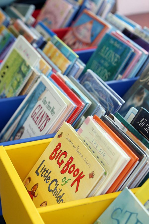 Photo displays Children books. Photo courtesy of Wokingham Libraries/ Pixabay