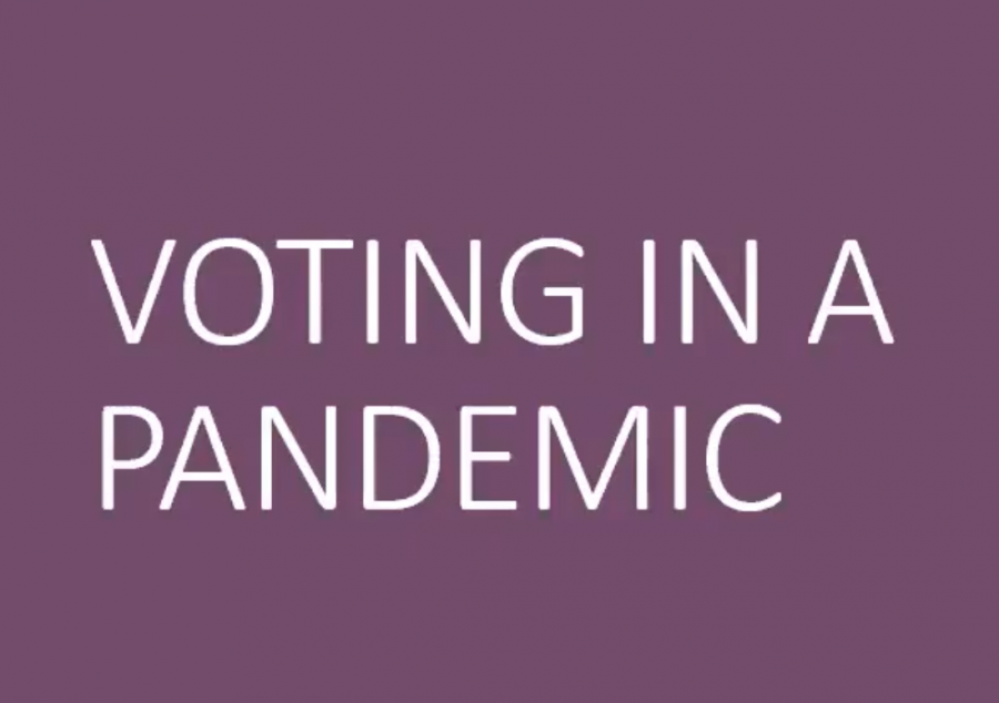 Voting in a Pandemic