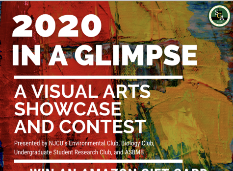 2020 In A Glimpse: A Visual Arts Showcase and Contest (Submissions due by 12/7)