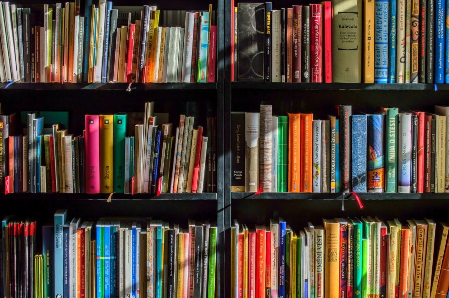 A bookshelf filled with young adult to educational literary texts.